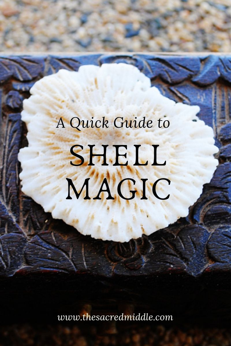 A Quick Guide to Shell Magic